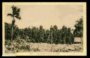 Kampot histoire